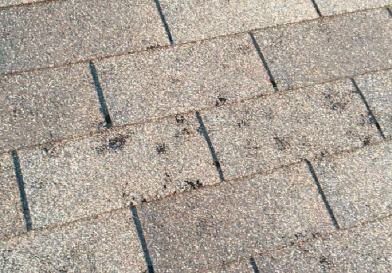 hail damage insurance claims